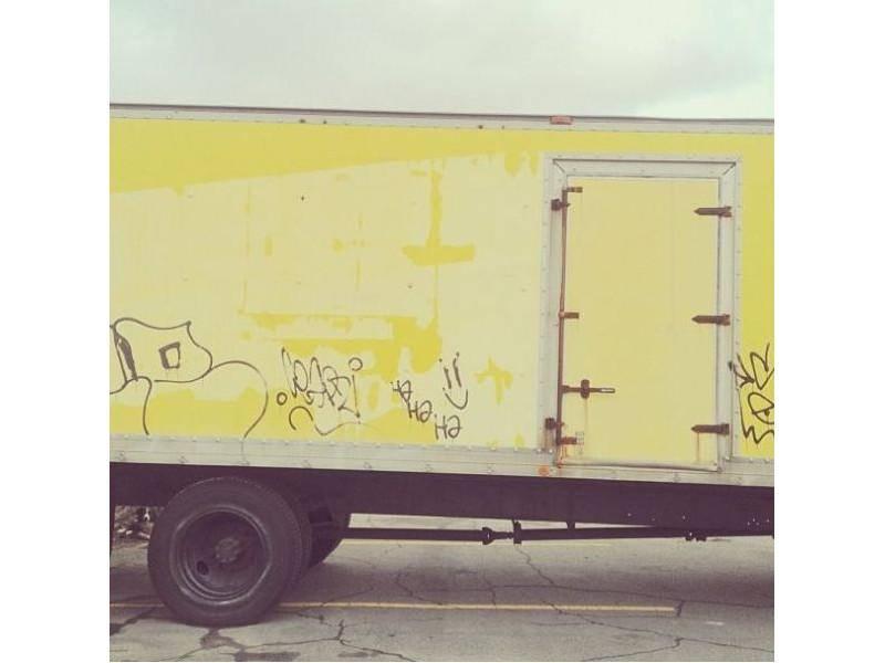 Ganz schön verfahren: Finden Sie Border Collie Hund Momo? — Bild: Instagram / andrewknapp