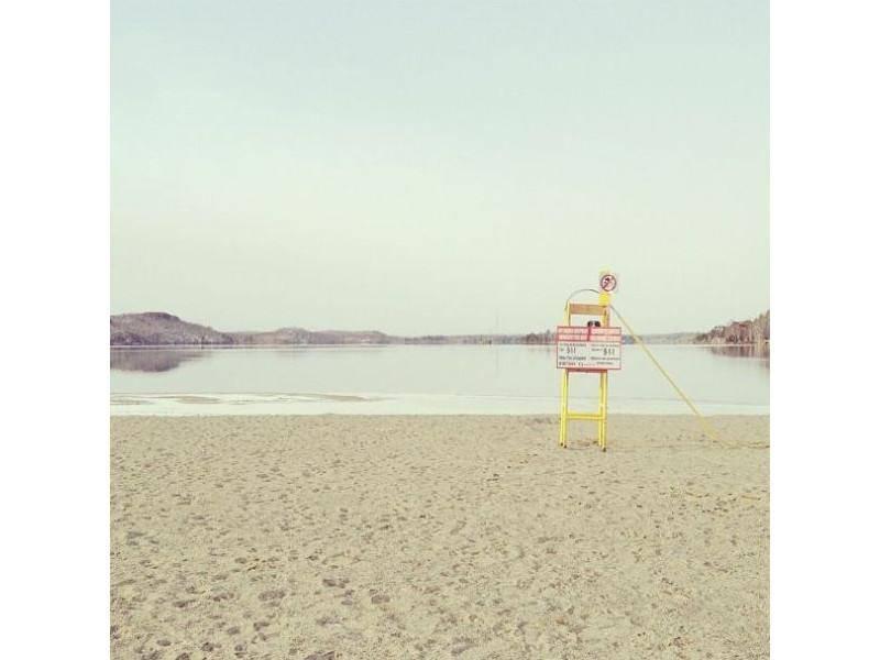 Ein Hund am Strand: Border Collie Momo