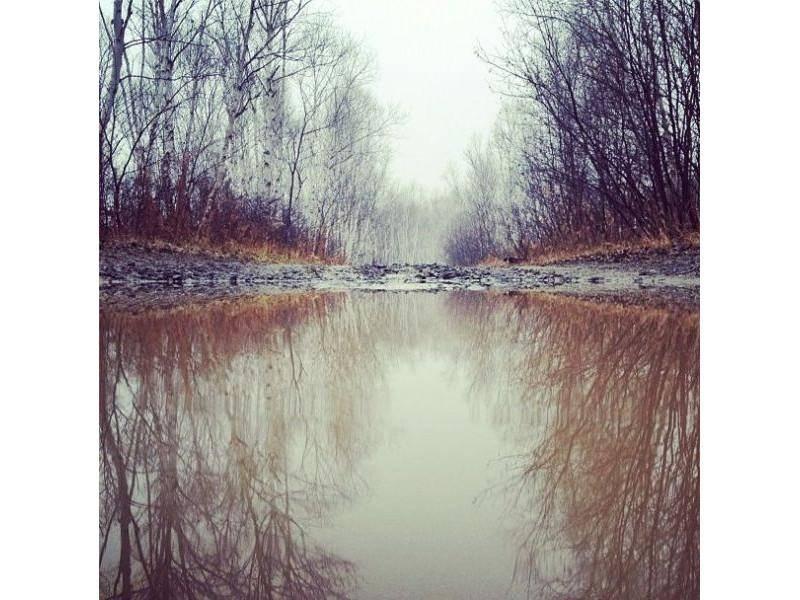 Das macht Hunden wie Border Collie Momo Freude: Verstecken spielen am Fluss