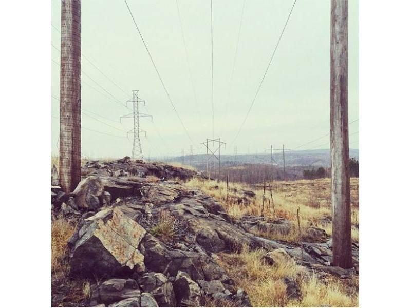 Steine, Strommasten, Gräser und natürlich Border Collie Hund Momo
