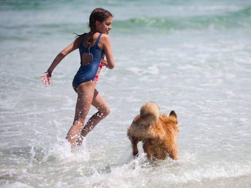 Hund gegen Herrchen: Wettrennen im Urlaub