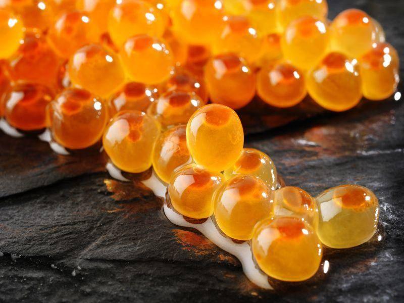 Orange und fast durchsichtig: Welchem Tier gehören diese Eier? — Bild: Shutterstock / phloen