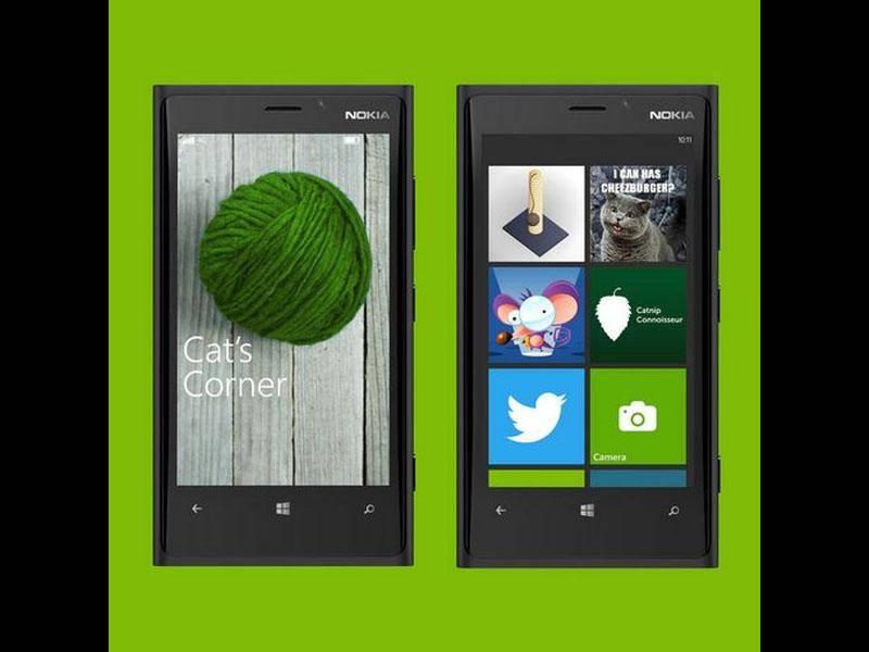 Idee von Microsoft: Smartphone-System für Katzen — Bild: 2013 Twitter / WindowsPhoneUK