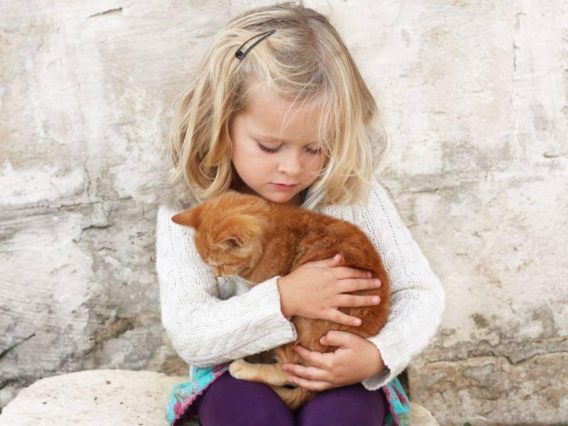Kind und Katze: Süße Kuschelfreunde — Bild: Shutterstock / AnneMS