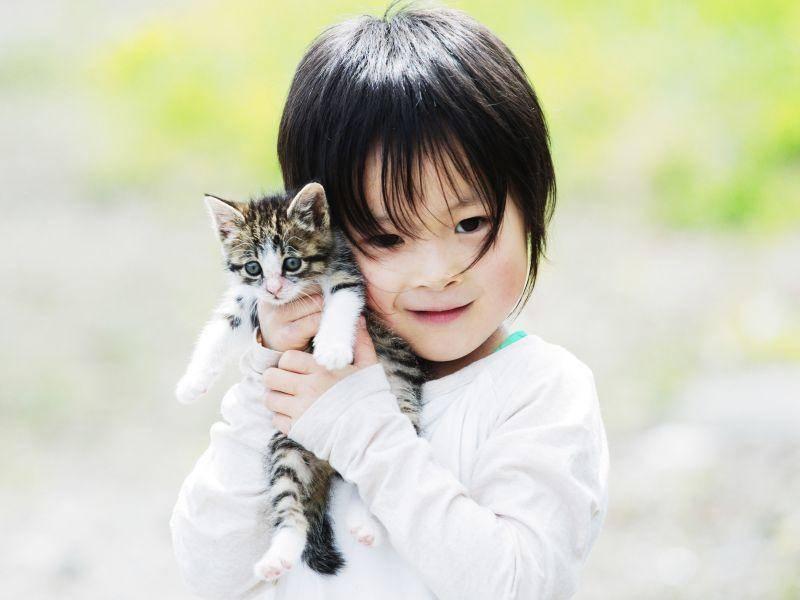 Süß: Dieses Kind ist ein besonders stolzer Katzenbesitzer — Bild: Shutterstock / makieni