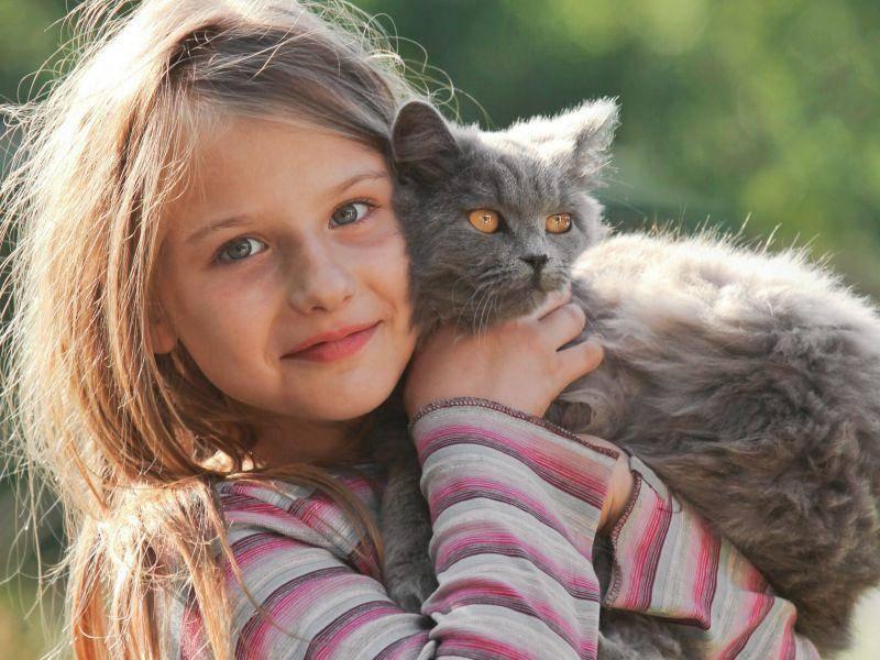 Katzen sind für Kinder die perfekten Partner zum Draußenspielen — Bild: Shutterstock / VKarlov