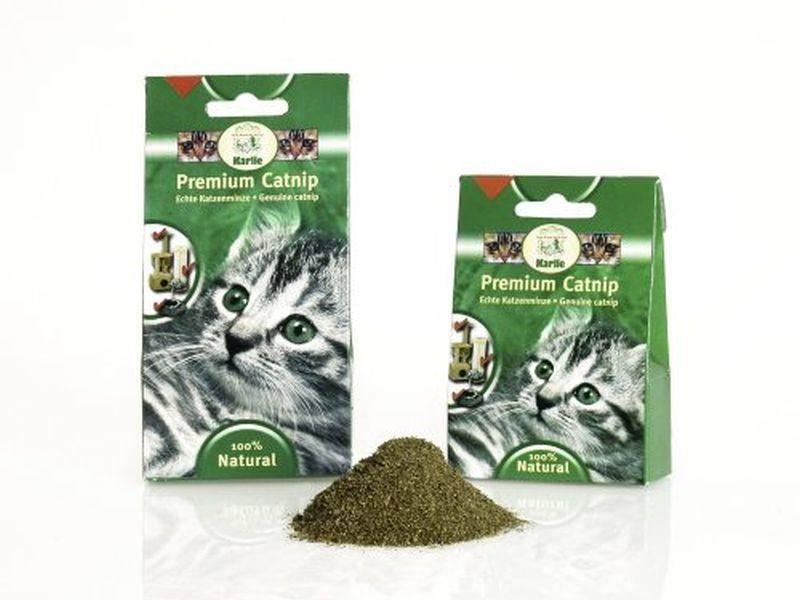 Katzenminze — Bild: Amazon