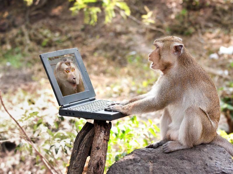 """""""Und ich kann meinem Kumpel mit Hilfe des Laptops zuwinken! Klasse!"""" – Bild: Shutterstock / Wiratchai wansamngam"""
