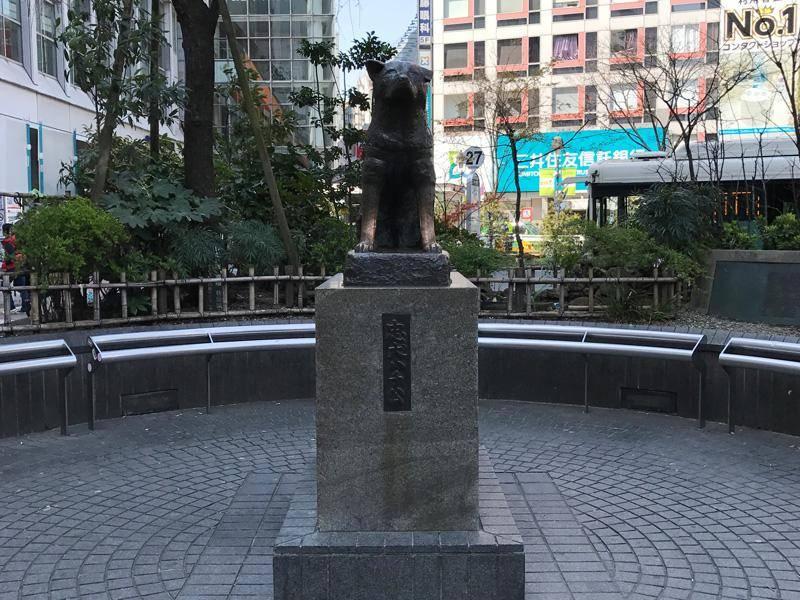 Hachikō gilt als Inbegriff von Treue. Eine Statue des Vierbeiners lässt sich in Shibuya in Tokio finden - Bild: Shutterstock / Chester77