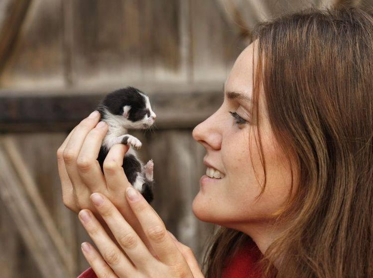 Frau mit Babykatze