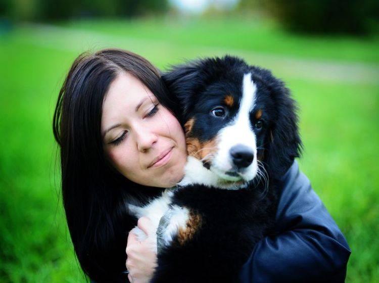 Krankenversicherung für Hunde abschließen kann für bestimmte Rassen etwas teurer werden — Bild: Shutterstock / LovelyColorPhoto