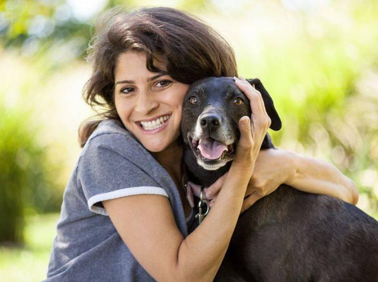 Hunde aus Spanien werden zum Beispiel über das Internet vermittelt — Bild: Shutterstock / eurobanks