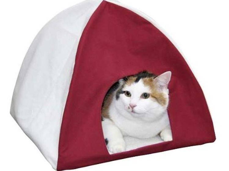 Katzenzelt — Bild: Amazon
