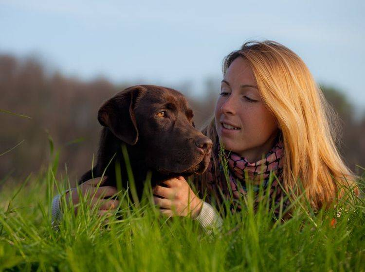 Hundeallergie: Wichtig ist, die Symptome so schnell wie möglich zu erkennen – Bild: Shutterstock / Marcella Miriello