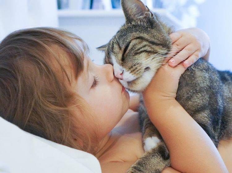 Ein respektvoller Umgang miteinander ist wichtig für Katzen und Kinder – Bild: Shutterstock / AlenaNex