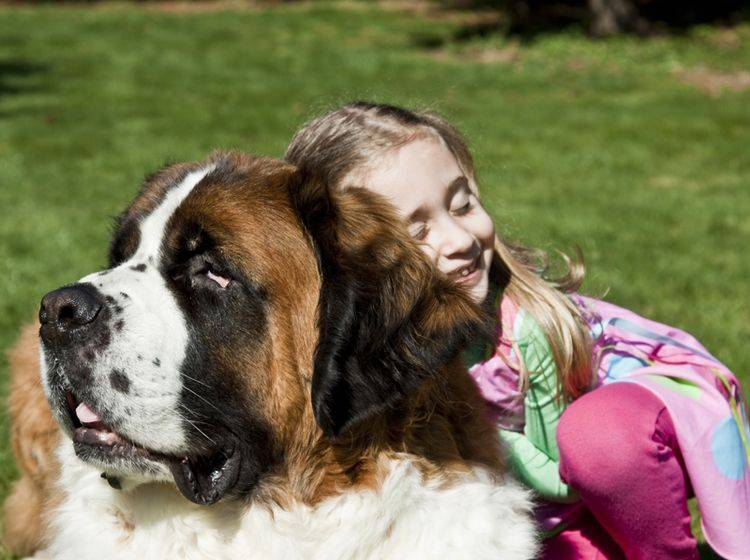 Zusammen mit Kindern fühlt sich der Bernhardiner in der Regel sehr wohl – Bild: Shutterstock / ItCameWithTheFrame