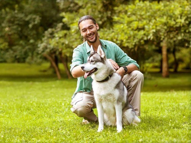 Einen guten Hundetrainer zu finden ist nicht immer leicht — Bild: Shutterstock / Rock and Wasp