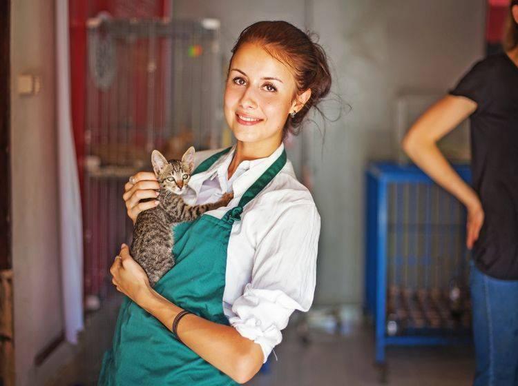 Eine Katze aus dem Tierheim freut sich über liebe Menschen – Shutterstock / Mila Supinskaya