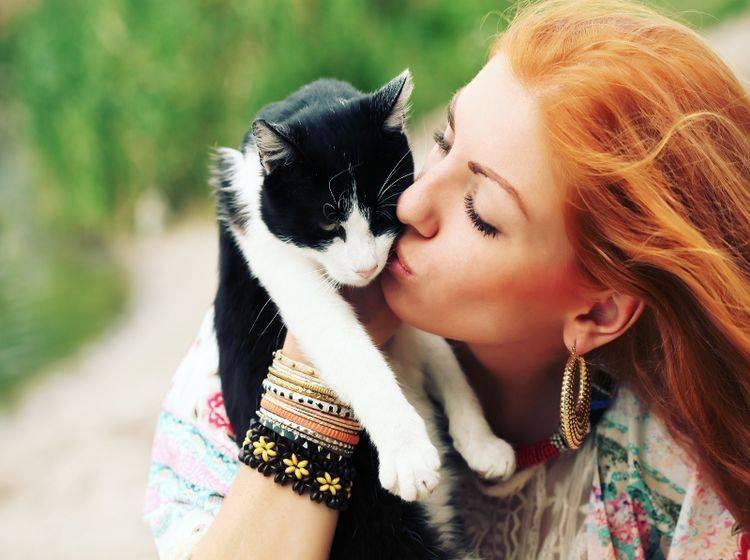 Katzen sind deutlich unabhängiger als etwa Hunde – Shutterstock / Bohemian soul