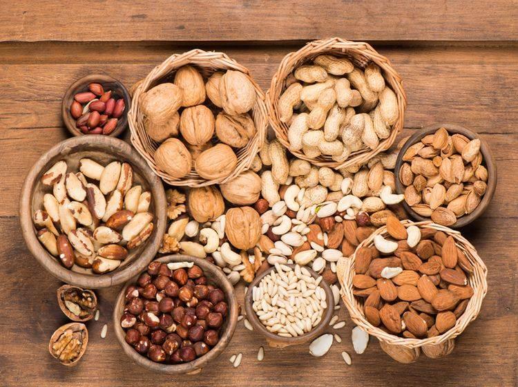 Einige Nüsse können für Hunde giftig sein – Shutterstock / Iryna Denysova
