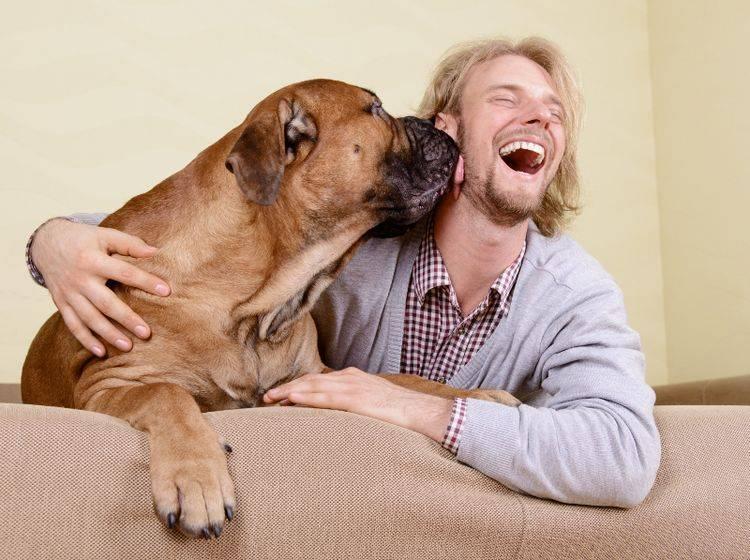 Wenn ein Hund sie aufrichtig liebt, können Sie sich wahrlich glücklich schätzen – Shutterstock / Inna Astakhova