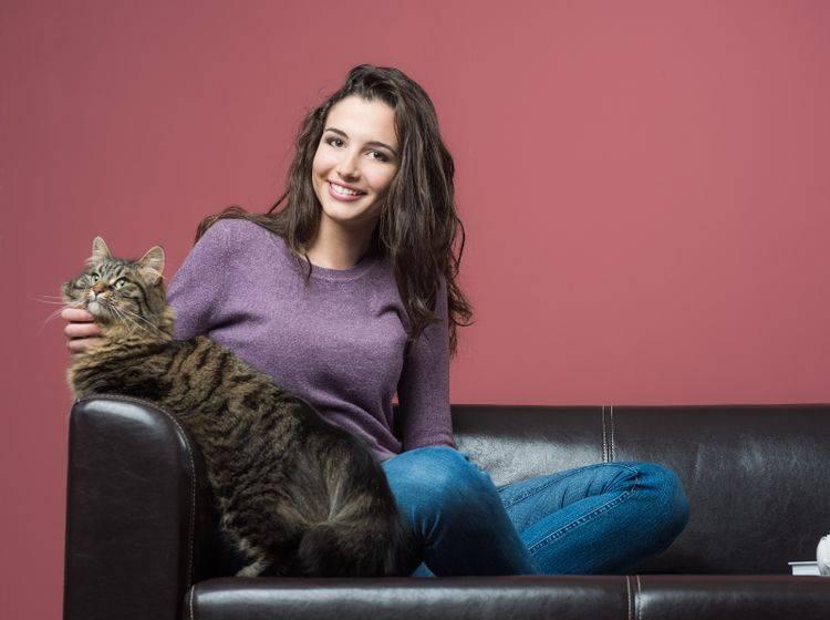 Zwischen Katzensitter und Katze sollte immer die Chemie stimmen – Shuttertsock / Stokkete