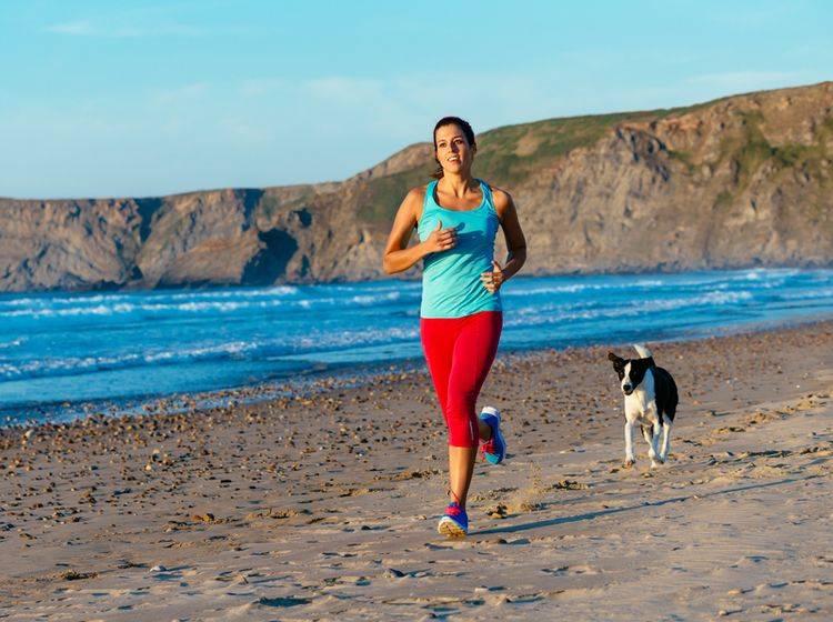 Sport mit dem Hund macht Mensch und Tier gemeinsam Spaß – Shutterstock / Dirima