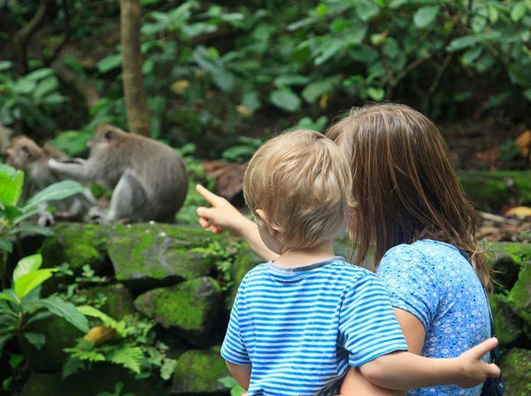 Im Zoo können Kinder lernen, Tiere besser zu verstehen und sie zu respektieren – Shutterstock / Nadezhda1906