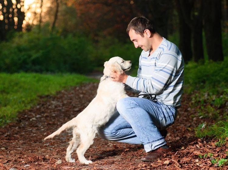 Orientierungstraining beim Spaziergang macht Spaß und stärkt die Hund-Mensch-Freundschaft – Shutterstock / Oksana Shufrych