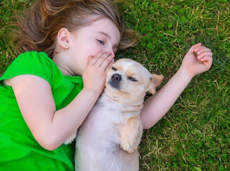 """""""Hey, hör mal. Ich hab dich lieb!"""" – Hunde mögen es in der Regel, wenn man mit ihnen spricht – Shutterstock / holbox"""