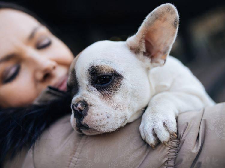 Eine starke Bindung zwischen Mensch und Hund ist durch Vertrauen und das Gefühl von Sicherheit geprägt – Shutterstock / DuxX