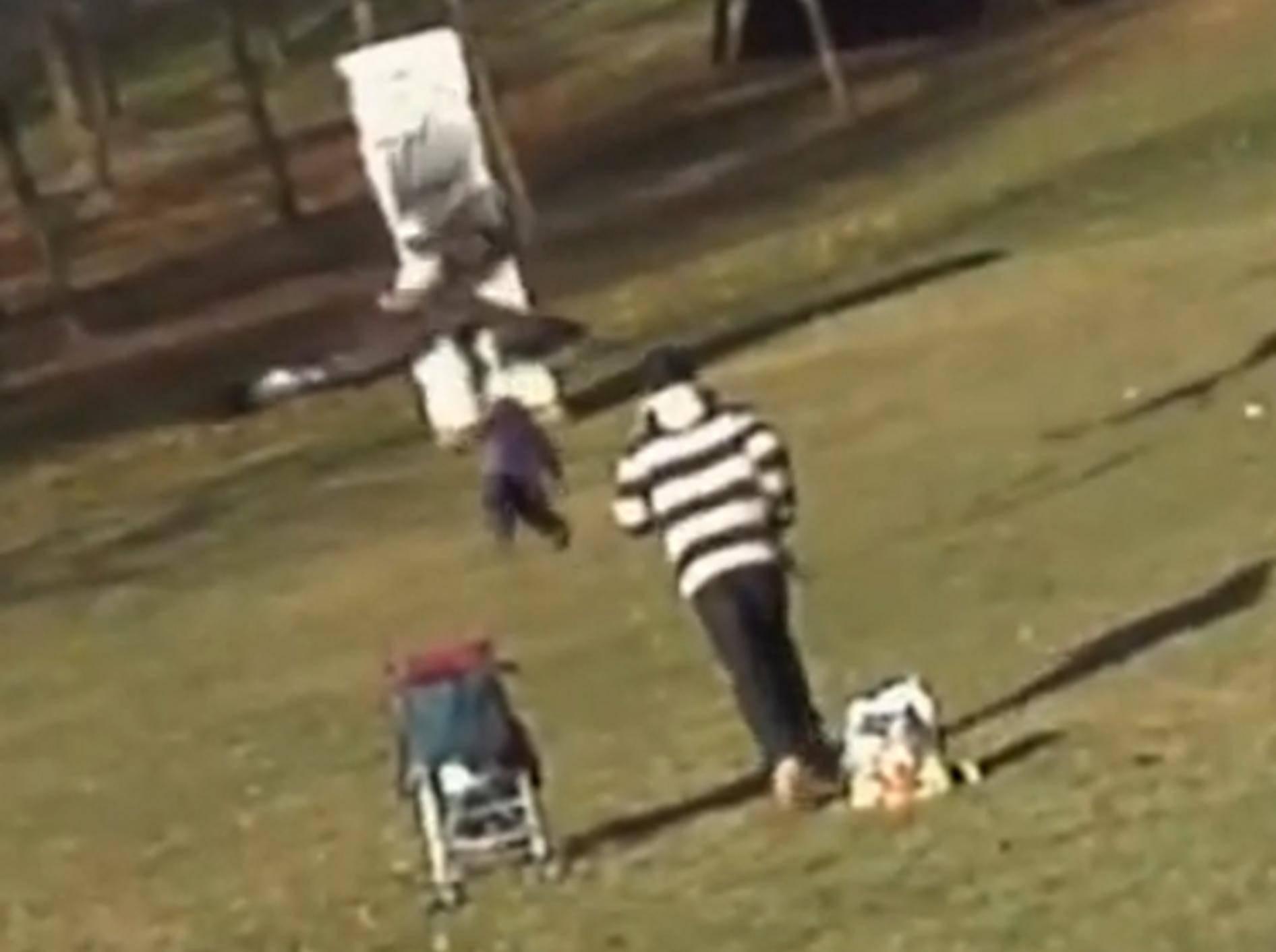 Fake-Video: Adlerangriff auf Kleinkind war nicht echt