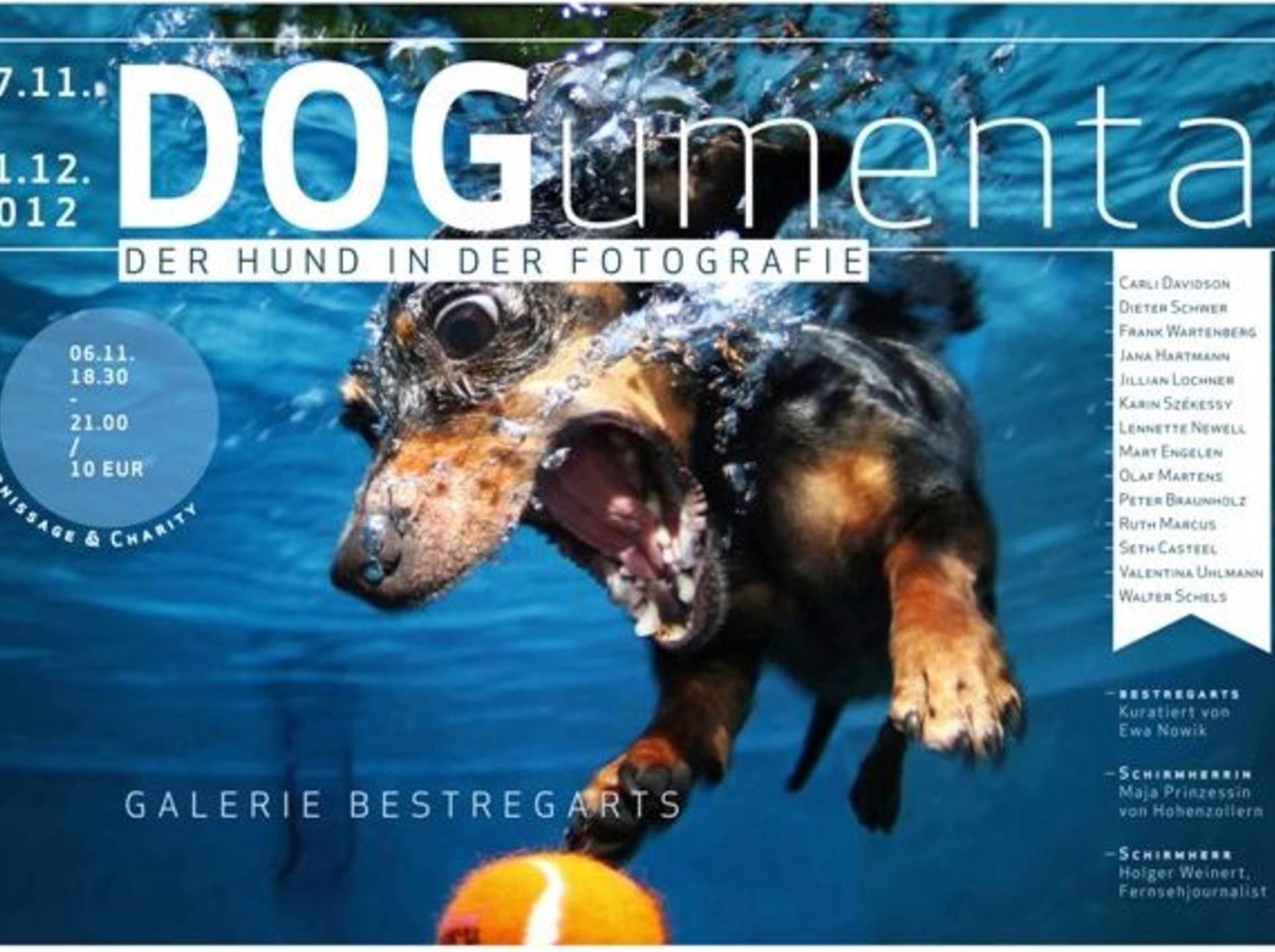 """Ausstellungsplakat der """"DOGumenta – der Hund in der Fotografie"""""""
