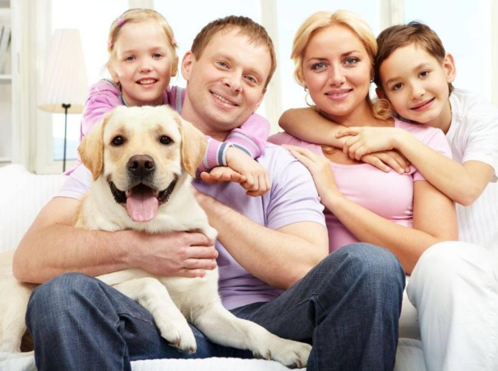 Retriever Hund mit Familie