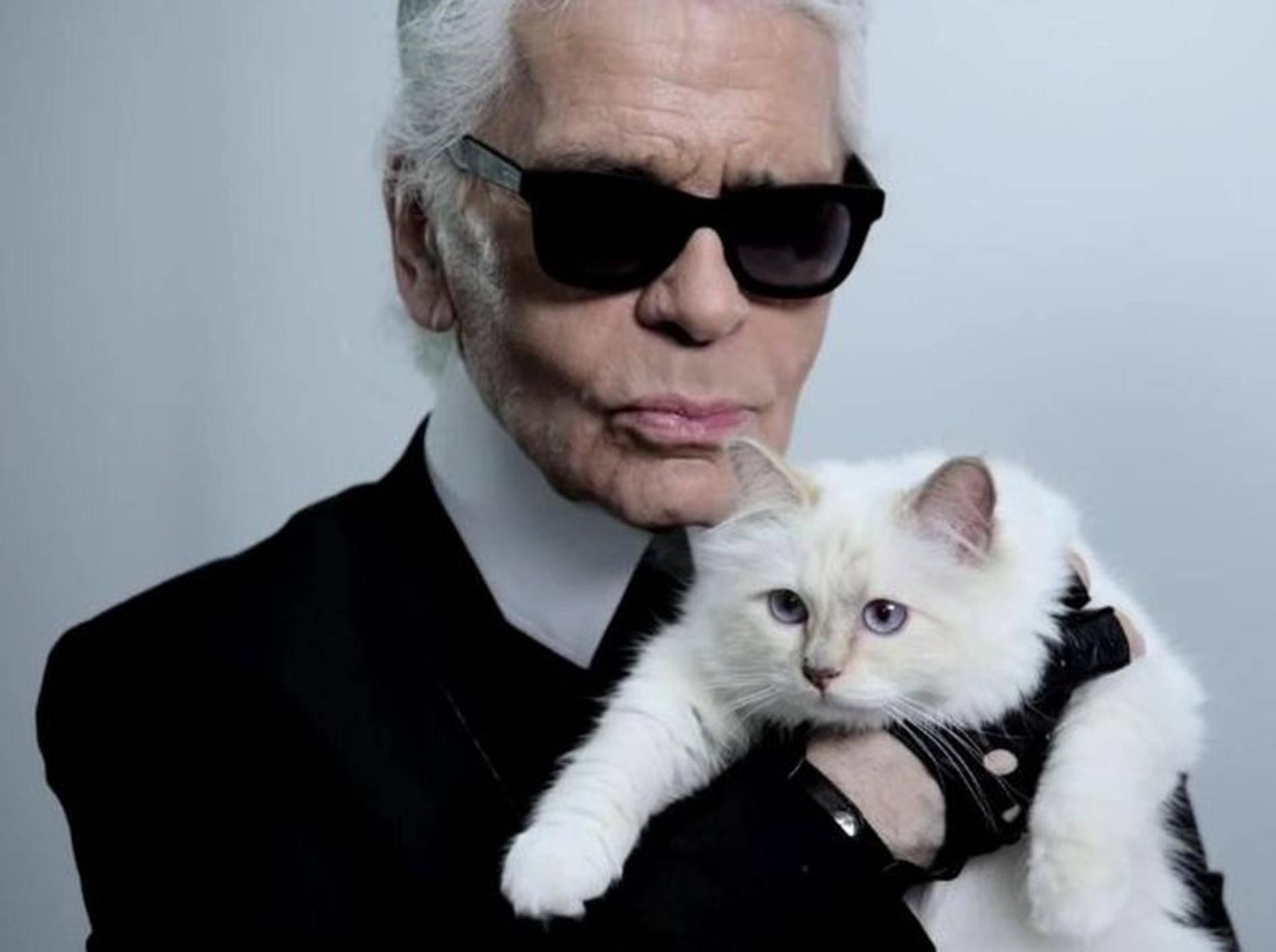 Karl Lagerfeld mit Katze