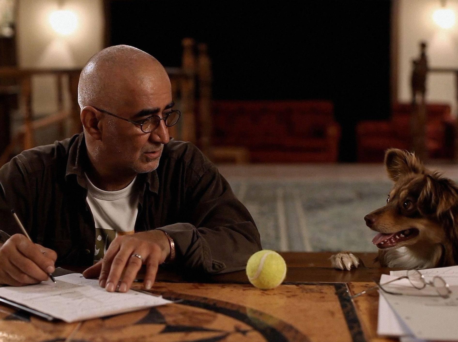 Hunde werden im Iran verfolgt