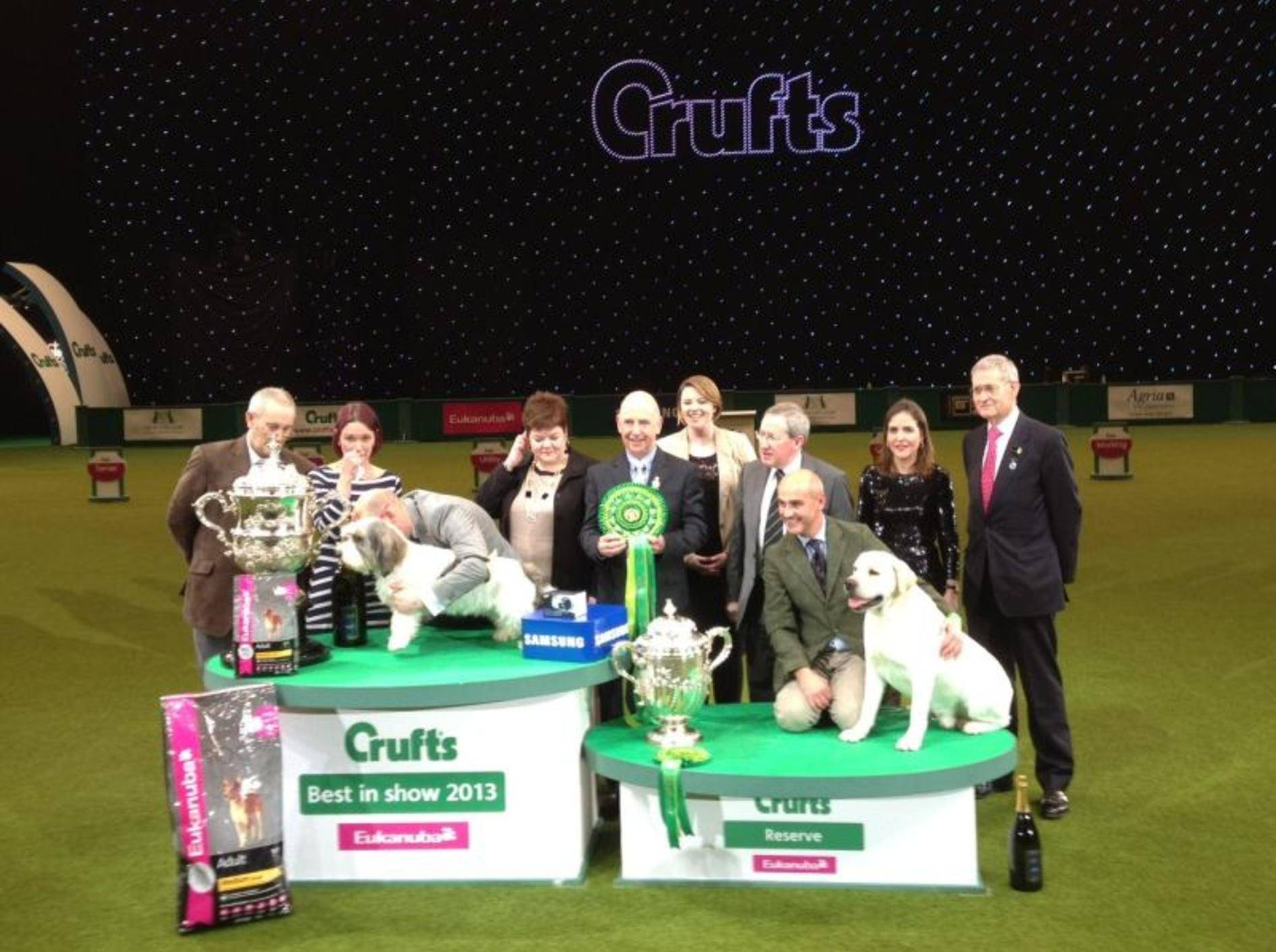 Die Crufts Hundeschau und einige ihrer Gewinner — Bild: 2013 Facebook / Crufts
