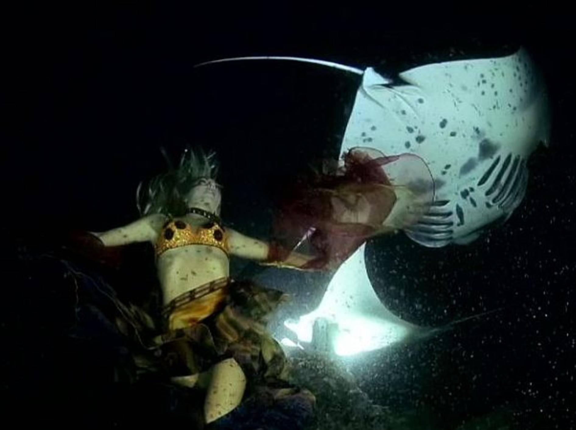 Unterwassertanz mit Rochen und Model – Bild: Youtube / sharksavers