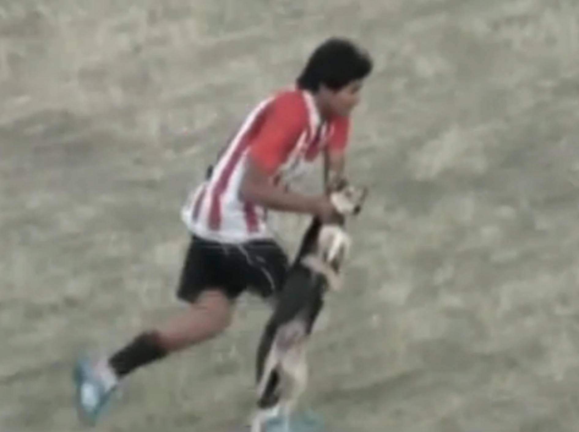 Brutal: Fußballspieler schleudert Hund gegen Zaun