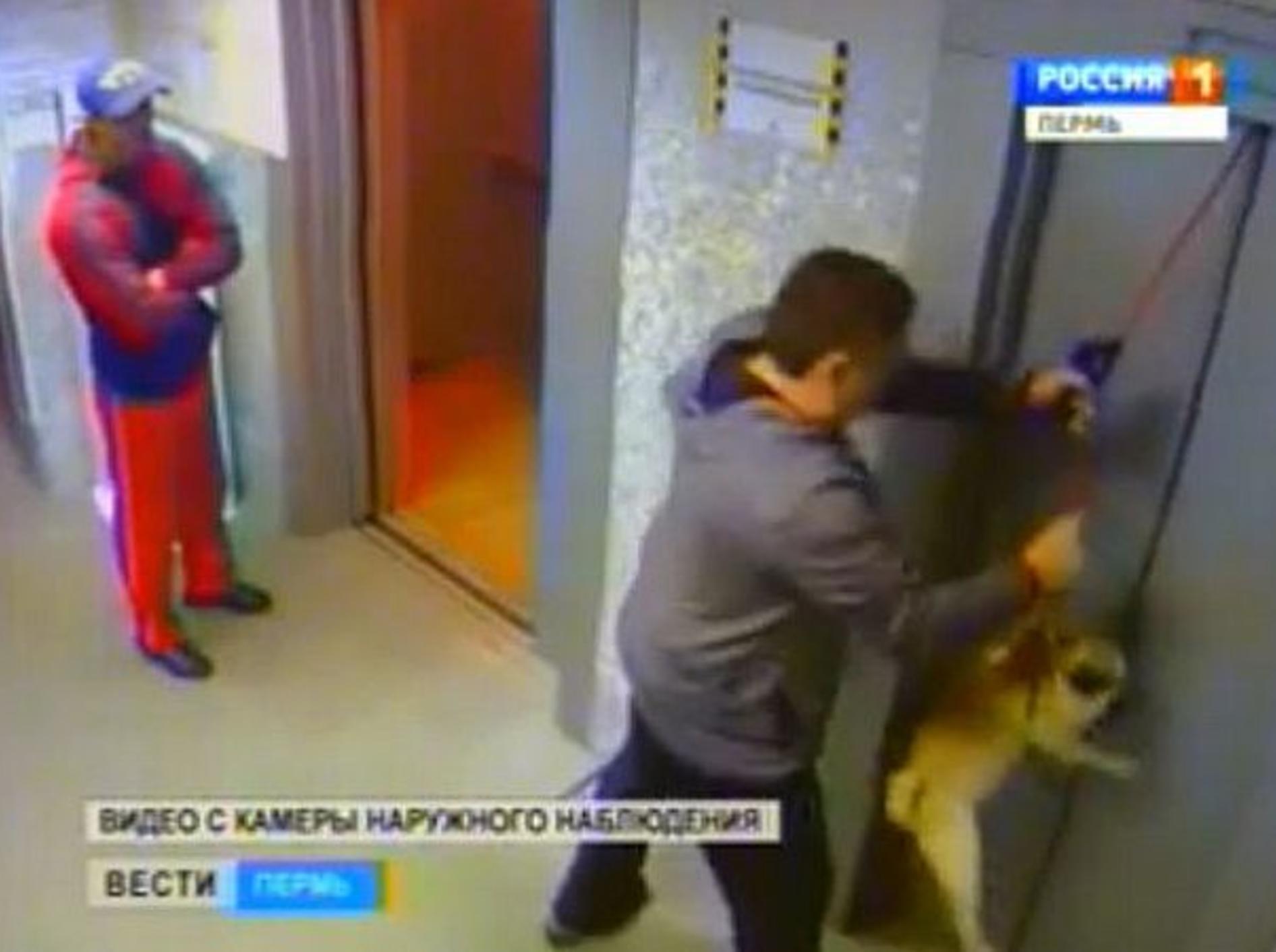 mann-rettet-hund-fahrstuhl