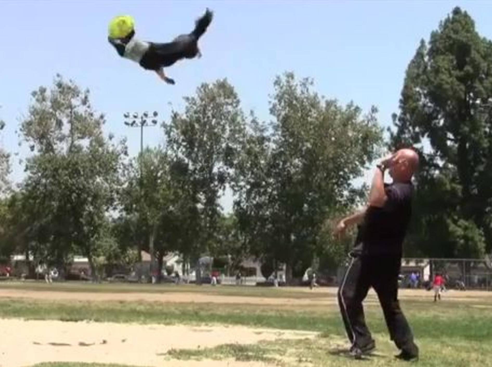 Alleskönner Jumpy zeigt seine tollsten Tricks — Bild: Youtube / Omar von Muller