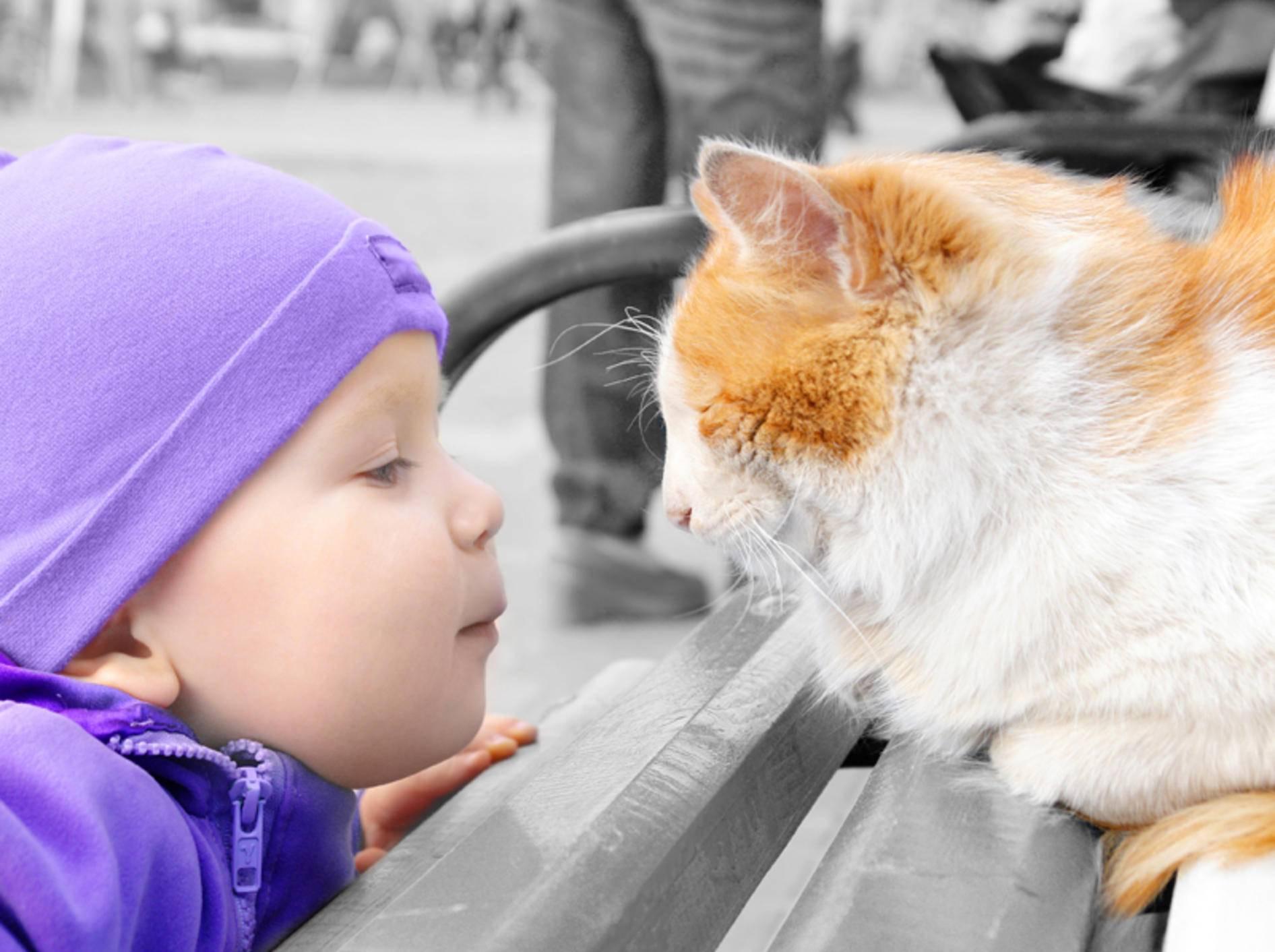 Katzenpilz ist für Kinder besonders ansteckend – Bild: Shutterstock / Shmeliova Natalia