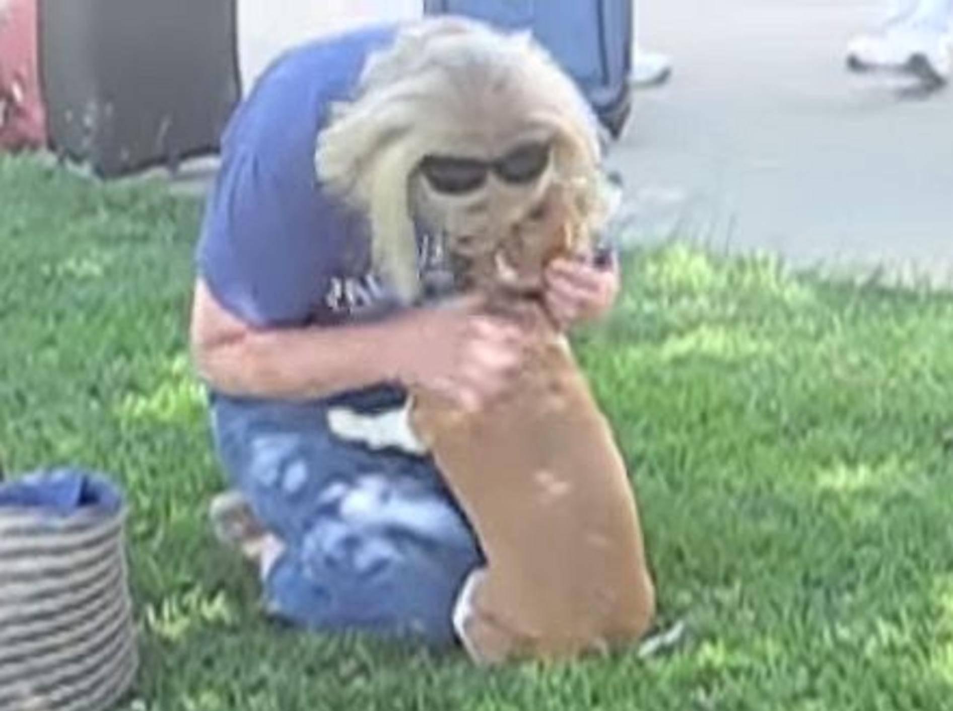 Süßes Wiedersehen mit einem Beagle – Bild: Youtube / BohnBell