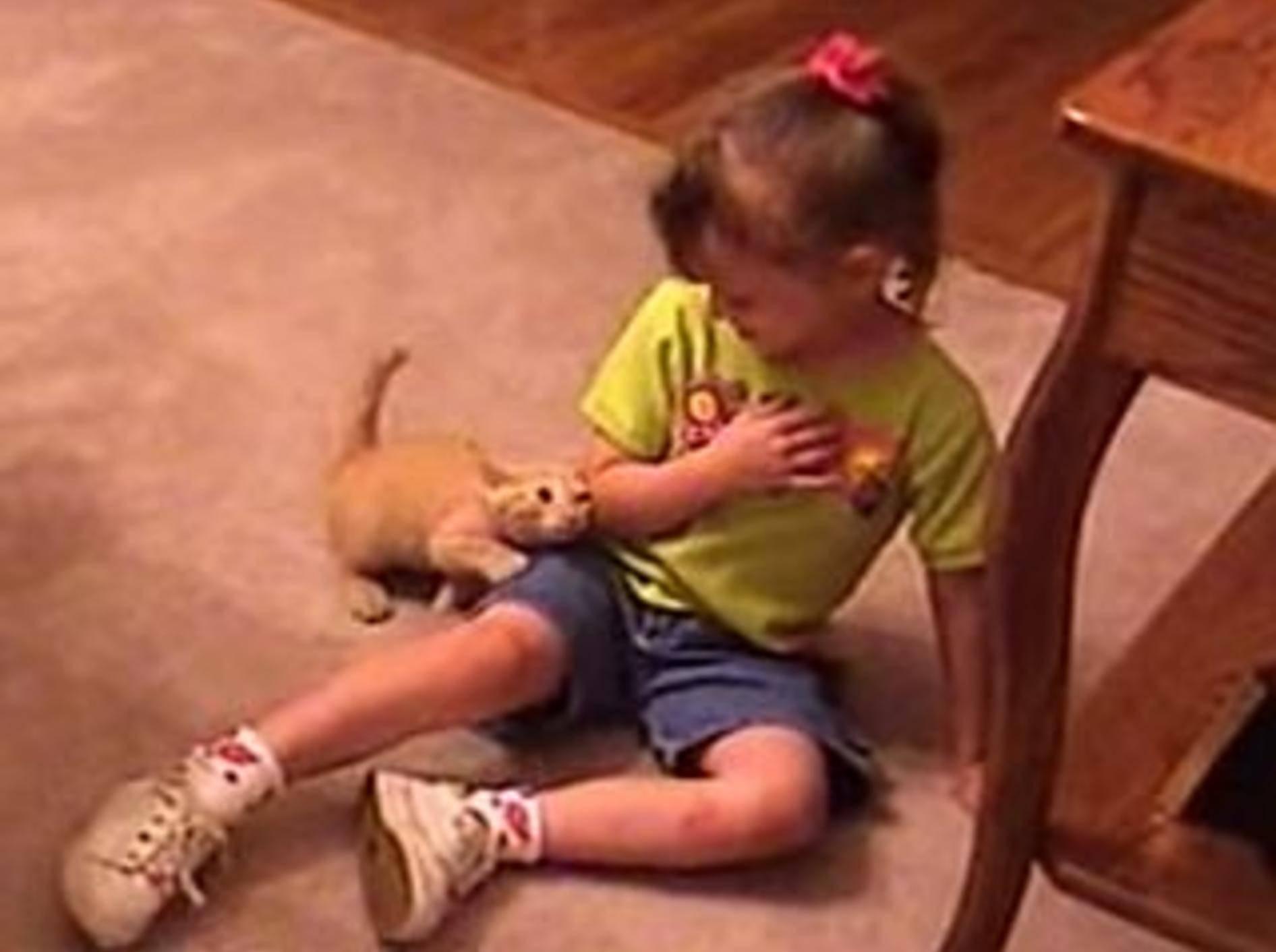 Kätzchen und Kind: Liebe auf den ersten Blick – Bild: Youtube / homevideoswag