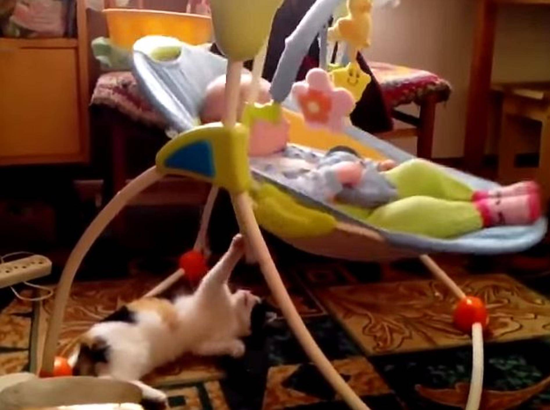 Liebe Katze schaukelt Baby – Bild: Youtube / Viralistas.com