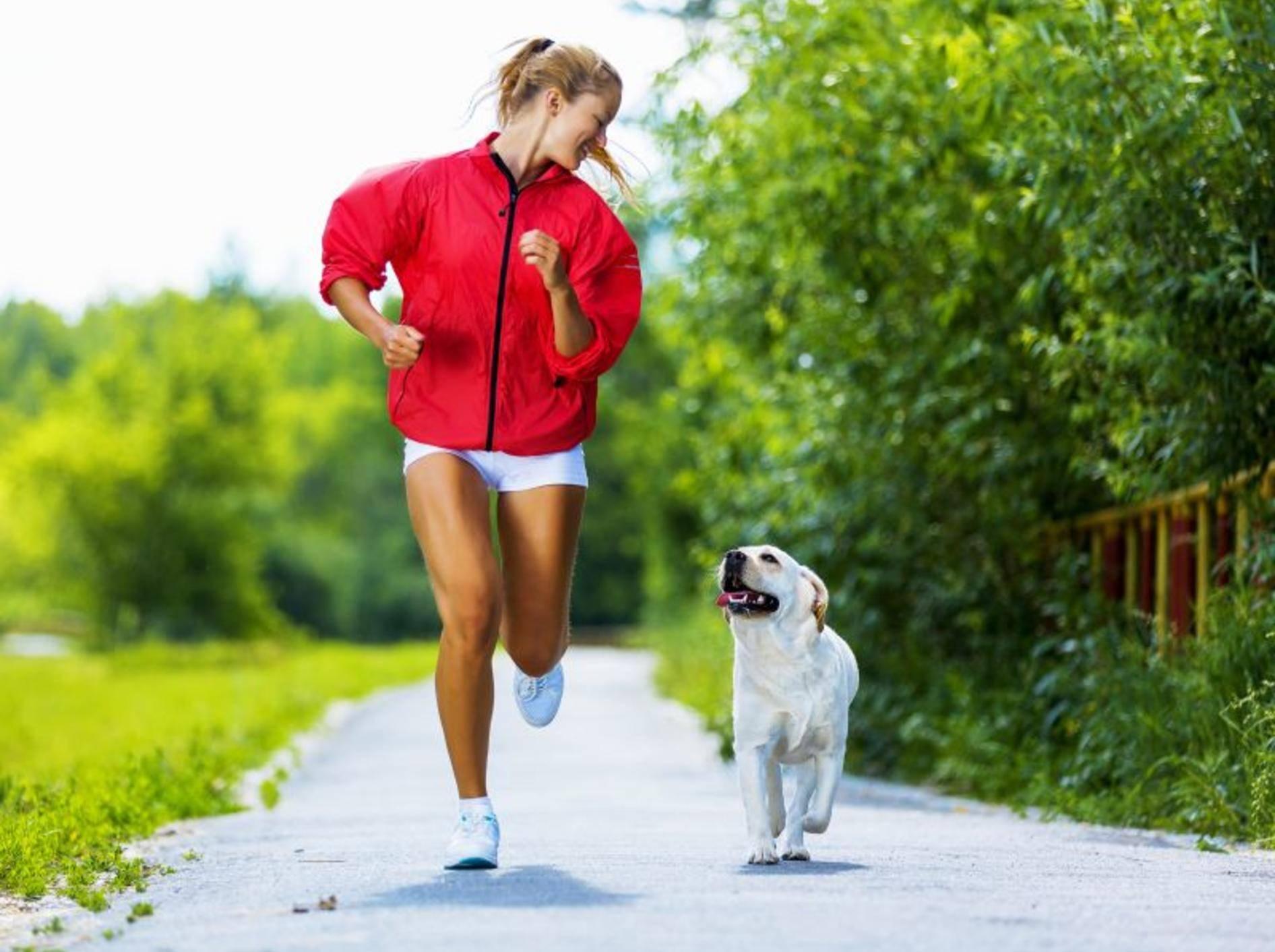 Joggen macht Zwei- und Vierbeinern Spaß – Bild: Shutterstock / Sergey Nivens