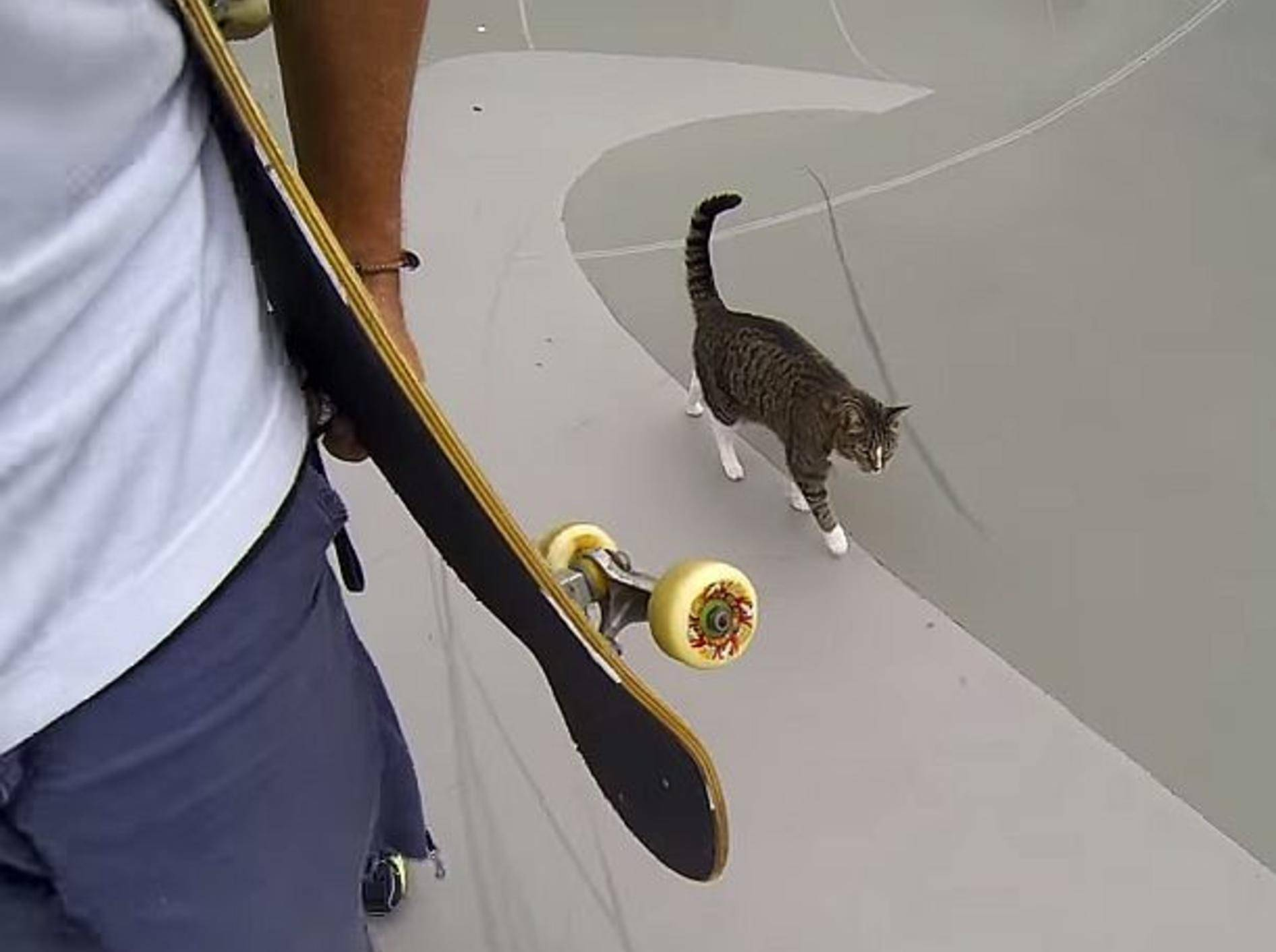 Skateboard-Profi Didga zeigt Tricks im Skatepark – Bild: Youtube / GoPro