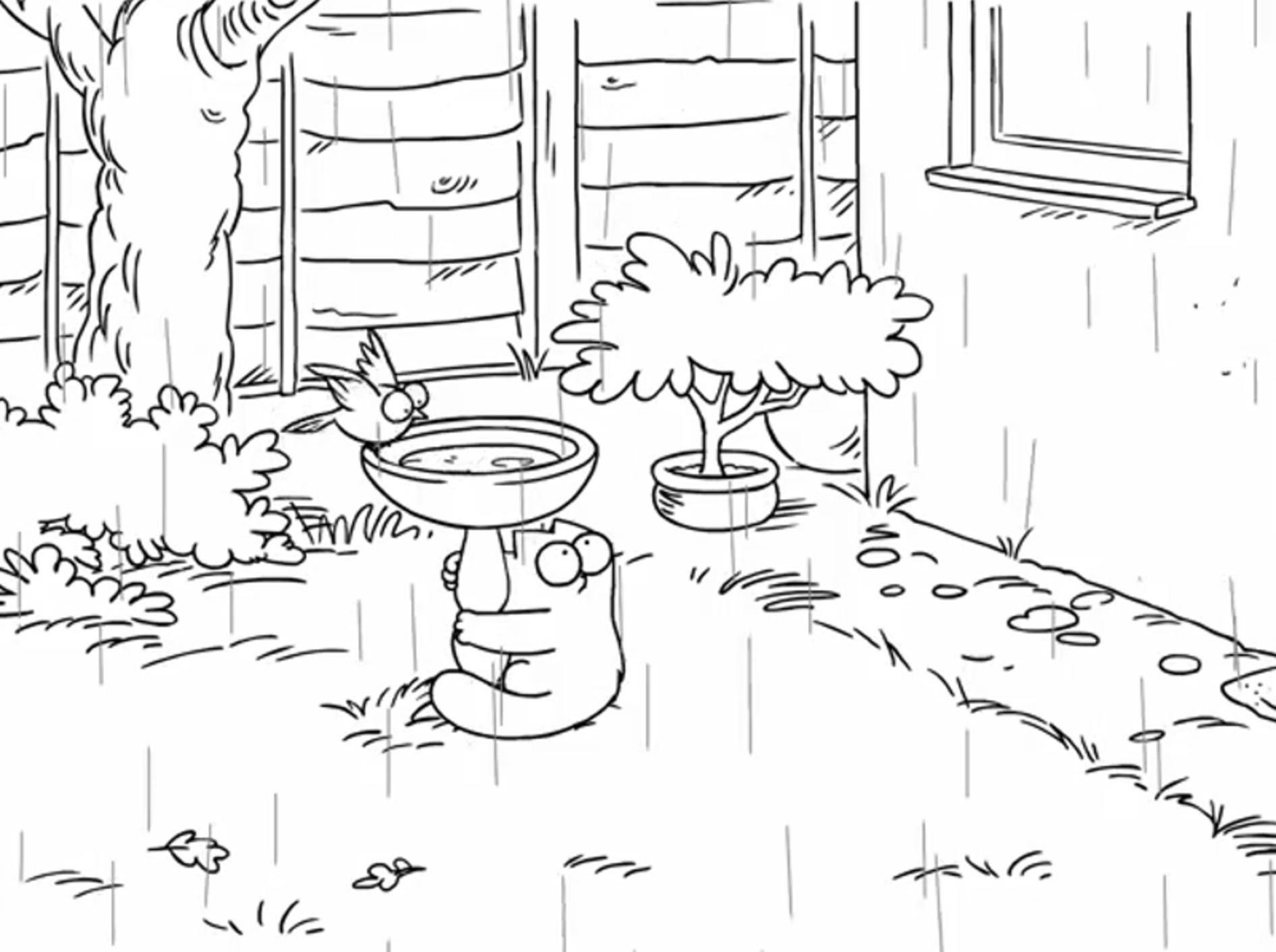 "Simon's Cat: ""Regen ist blöd!"" – Bild: YouTube / Simon's Cat"