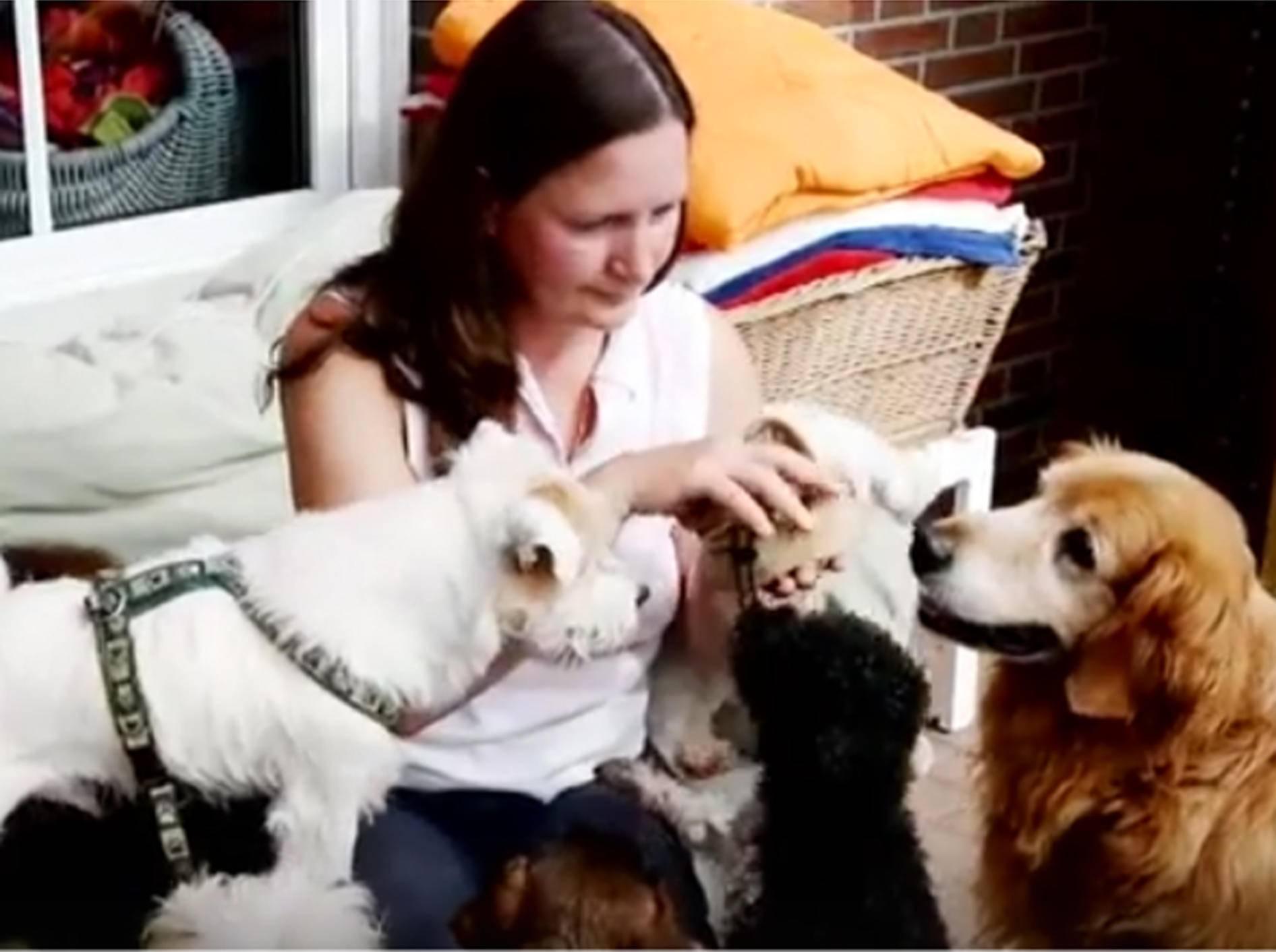 Heike Thiel und ihre Hundefreund vom Omihunde Netzwerk – YouTube / Heike Thiel