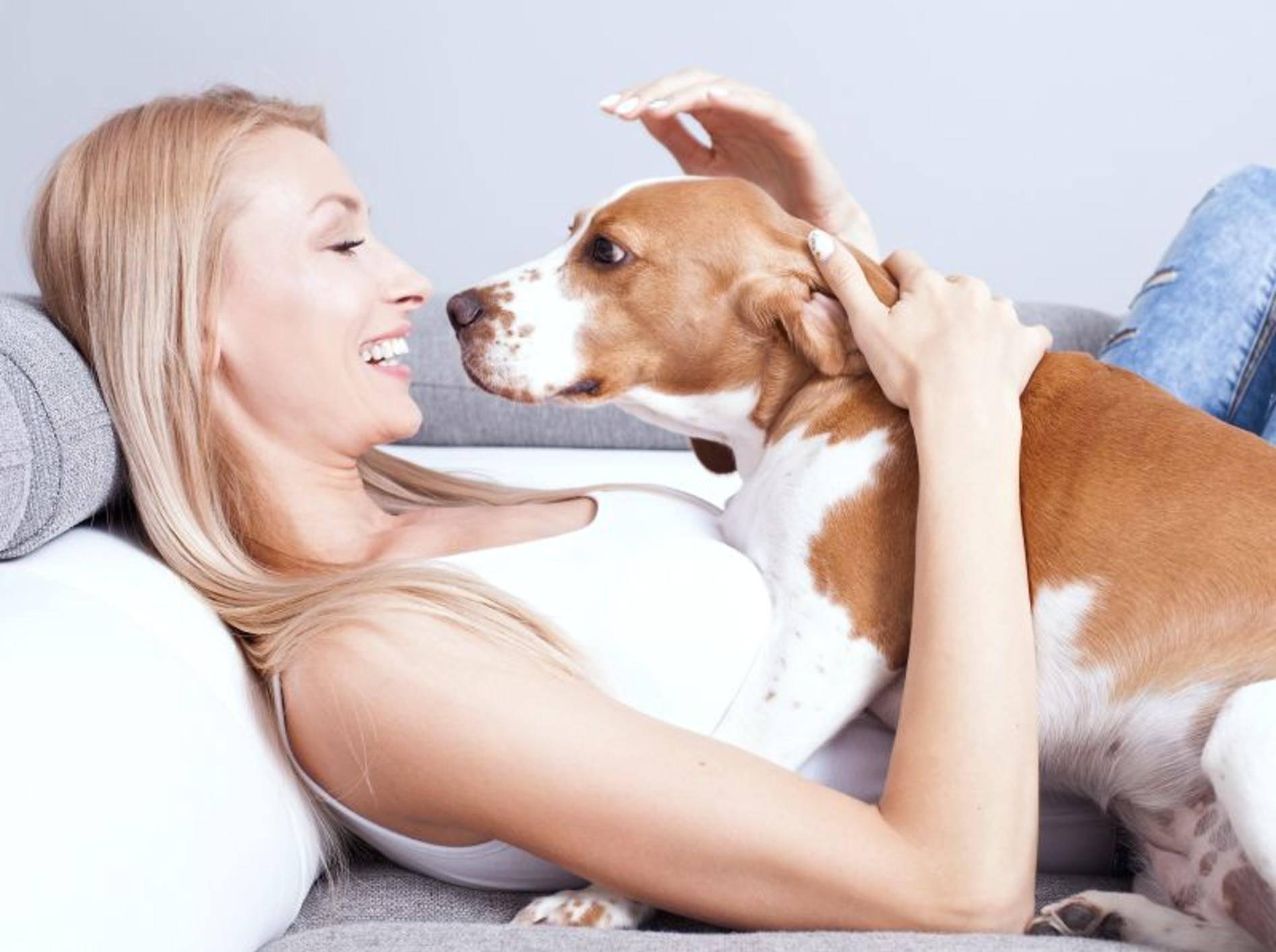 Ein guter Tierpsychologe weiß bei Verhaltensproblemen Rat – Shutterstock / NeonShot